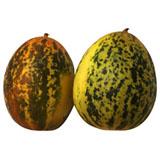 Cucumber Madras
