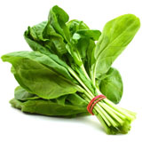 Spinach Pc