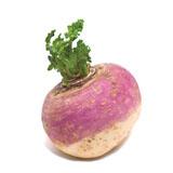 Turnip Kg